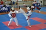 Vedi album Campionati Combattimento Toscana 2012